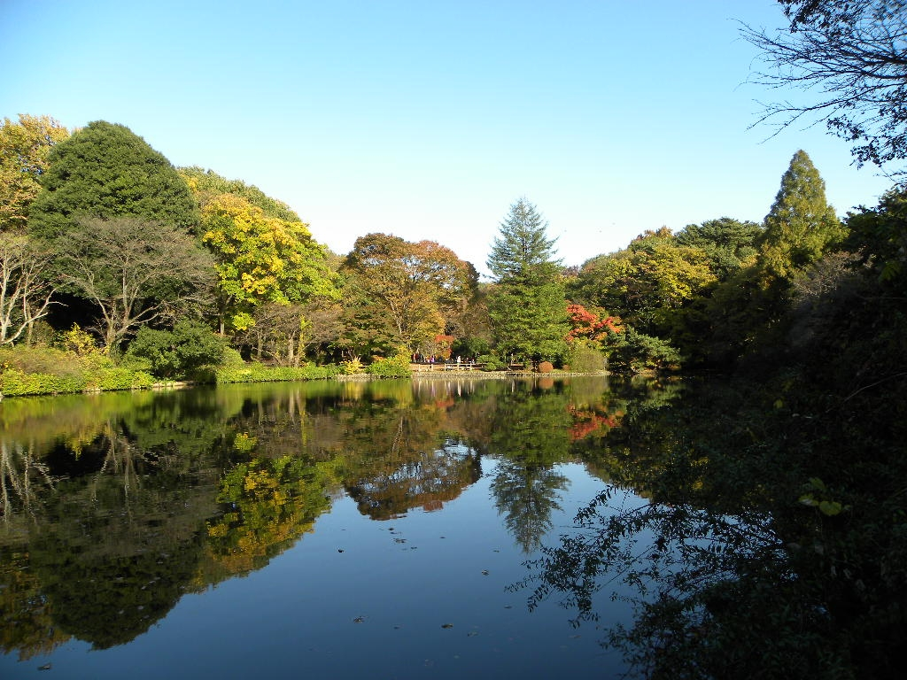 ノベリスタ 村上春樹「閉じられた庭・侵食する底」